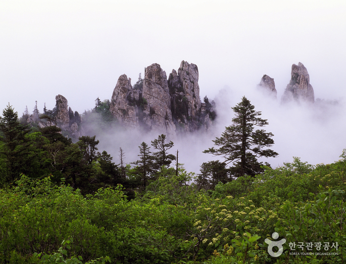 Let's visit Sokcho for a day trip!