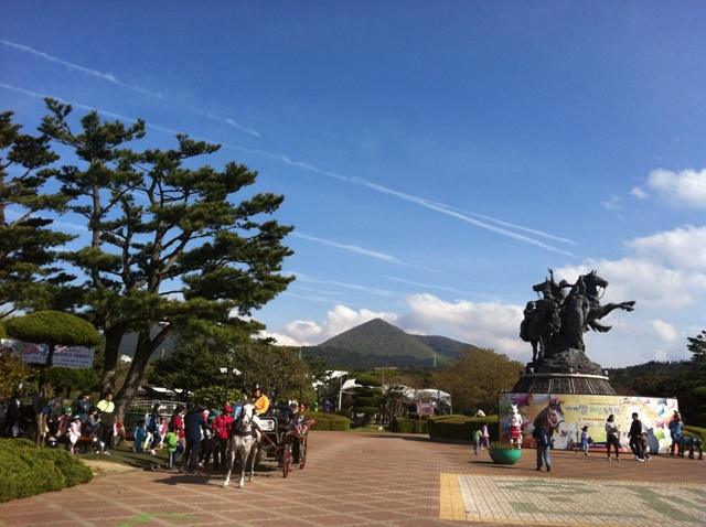 22 Jeju Horse park