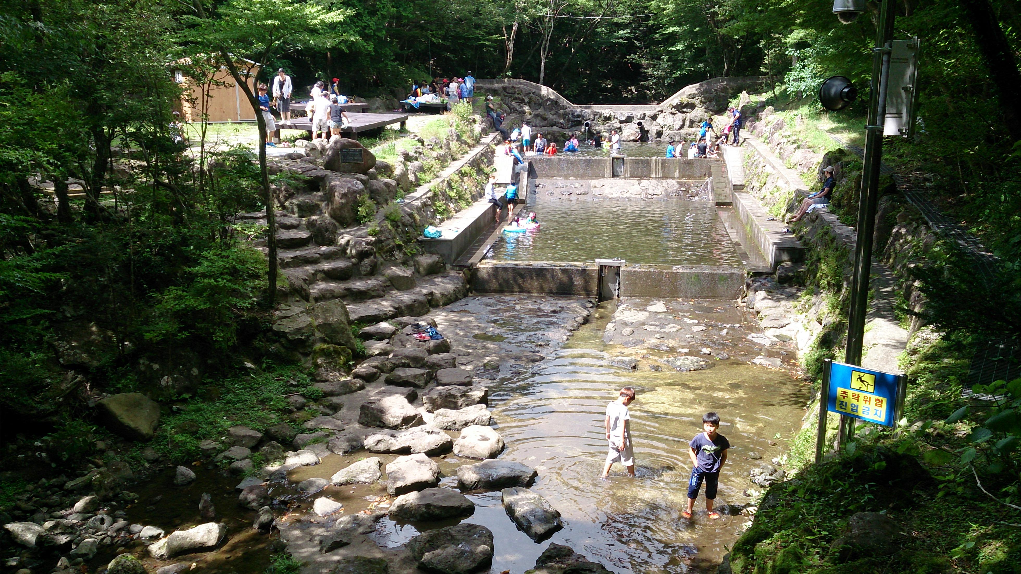 36 Seogwipo Natural Recreation Forestl
