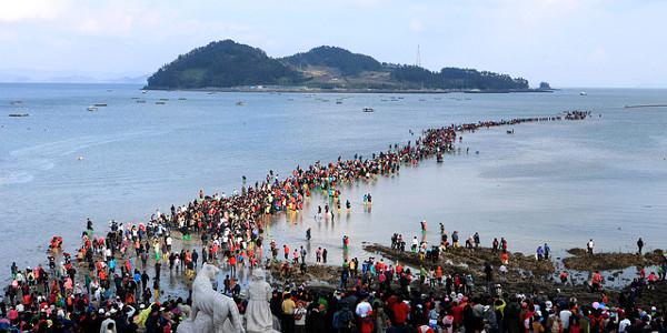 jindo-sea-parting-festival-1