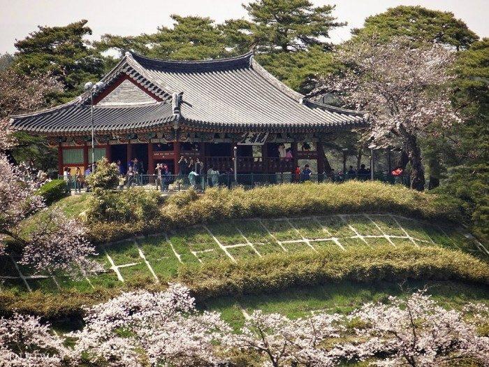 Gyeongpo