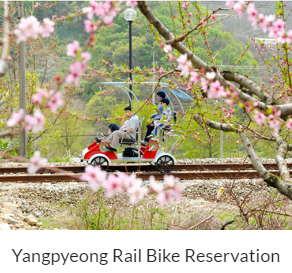Yangpyeong Rail Bike Reservation Indiway