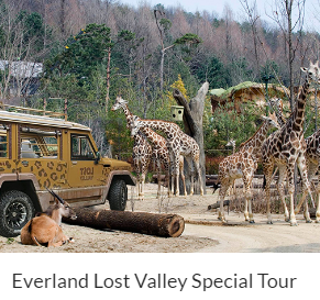 Everland Lost Valley Special Tour Indiway