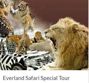 Everland Safari Special Tour Indiway