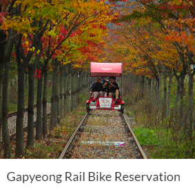 Gapyeong Rail Bike Reservation Indiway