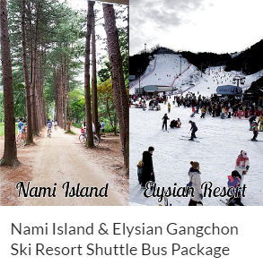 Nami Island & Elysian Gangchon Ski Resort Shuttle Bus Package Indiway