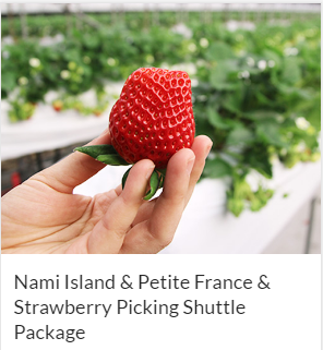 Nami Island & Petite France & Strawberry Picking Shuttle Package Indiway
