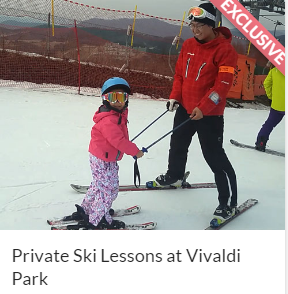 Private Ski Lessons at Vivaldi Park indiway