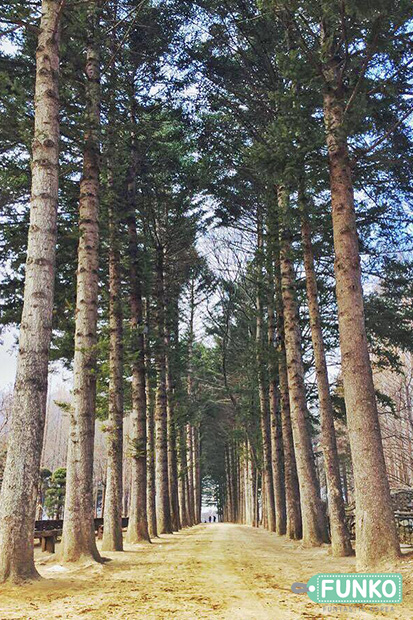 treeess