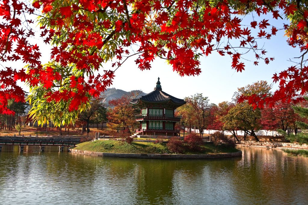 Korea_Autumn_Foliage