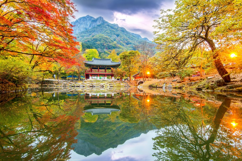 Naejangsan Mountain Autumn Foliage 2