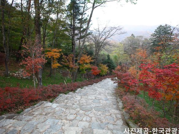 Odaesan_National_Park6