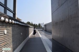 Jeju Museum