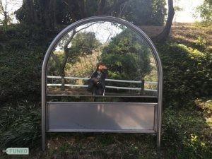 Jeju Botanical Garden