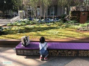 Jeju Garden