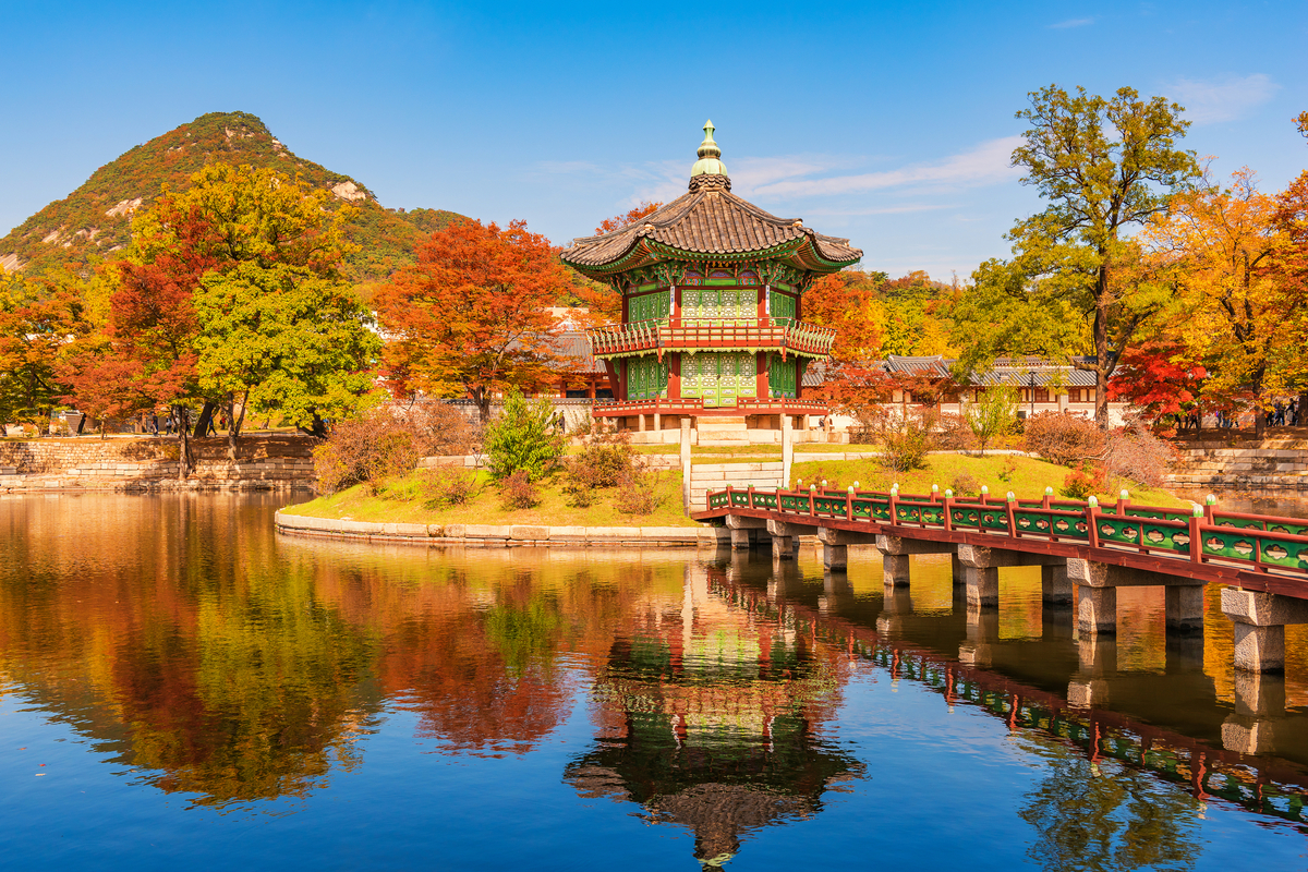 Autumn Foliage in Seoul Without Hiking