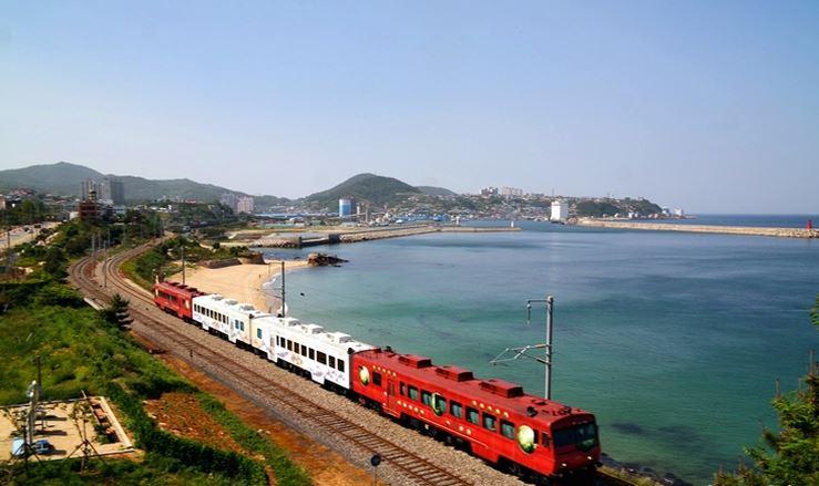Sea Train Korea – A Fail-proof Guide