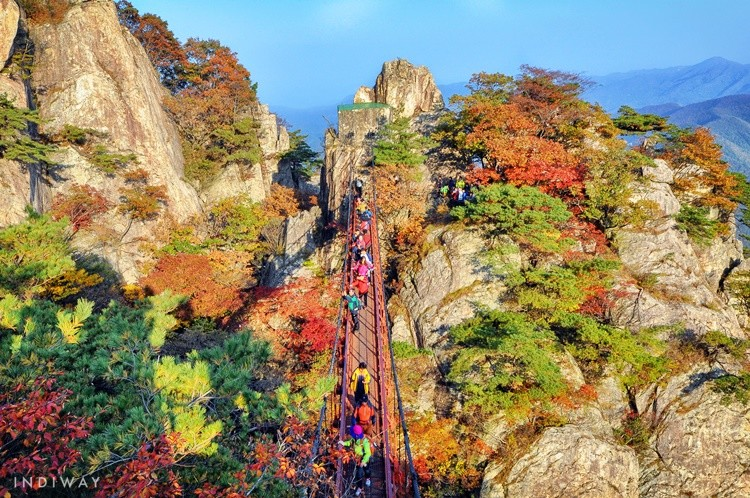 Challenge yourself to cross the Cloud Bridge and make a way up via Samseon Stairways with thrilling views ahead of you