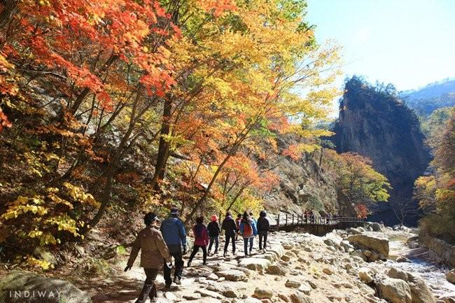 4 Best Mountains To See Gorgeous Autumn Foliage In Korea